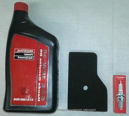Honda EU2000 Oil Change Service Kit Filter Spark Plug Air Ge